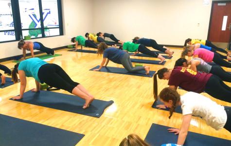 Got Yoga?