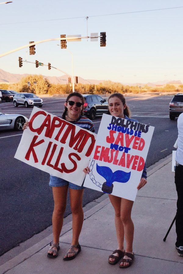 Helen Innes '19 and Caroline Liddy '18 protest the mistreatment of dolphins.