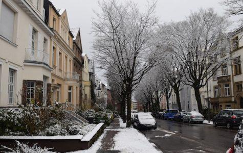 Exchange students navigate Germany, build transcultural relationships