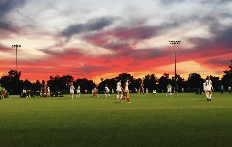 Playing for a team: school vs club sports