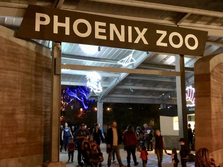 The+entrance+to+the+Phoenix+Zoo+with+the+first+group+of+lights+visible.