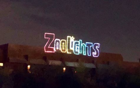 Phoenix ZooLights in pictures