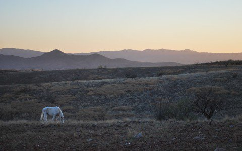 From the Me to We informational website, this is a sunset at the trip location of The Windsong Peace and Leadership Center, in Patagonia, Arizona.
