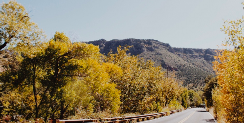 A+road+in+Sedona+that+expresses+the+fall+season+with+the+yellow+colored+leaves%0A