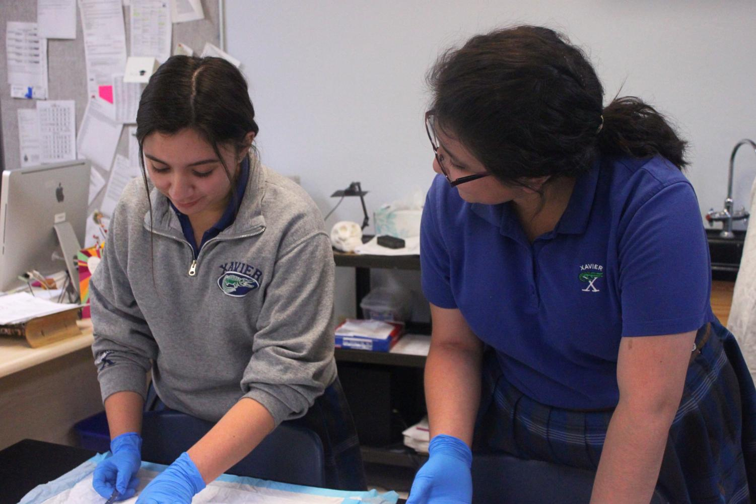 Xavier students dissecting a rat for service hours. Photo from Hannah Shulski '19.