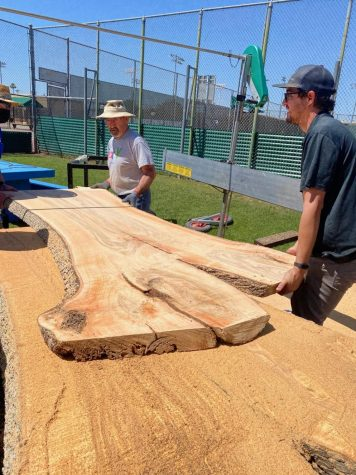 Sister Lynn and Xavier's administration decided to finally cut down the ash trees by the tennis courts due to termite damage, but are making new picnic benches out of the wood with the help of Ironwood Mills and C + D Industry.